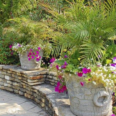 Summer patio garden
