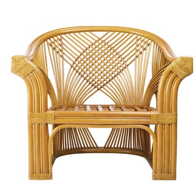 What Is the Difference Between Rattan & Wicker?