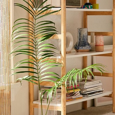 Skip the Chaotic Craft Store, Because UO Home Has Launched a Line of Faux Plants