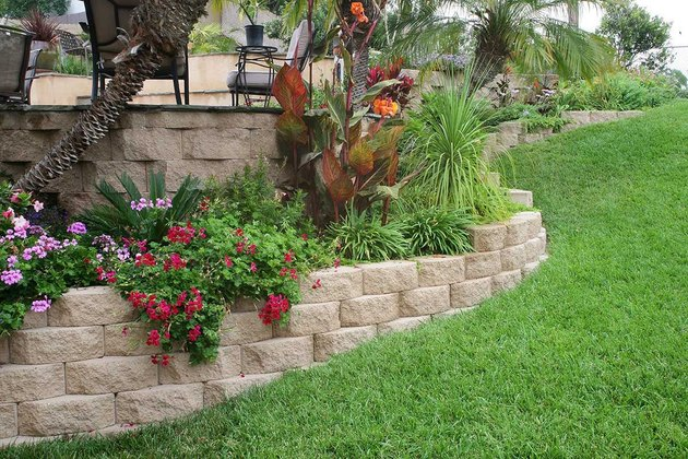 Retaining walls and garden plants.
