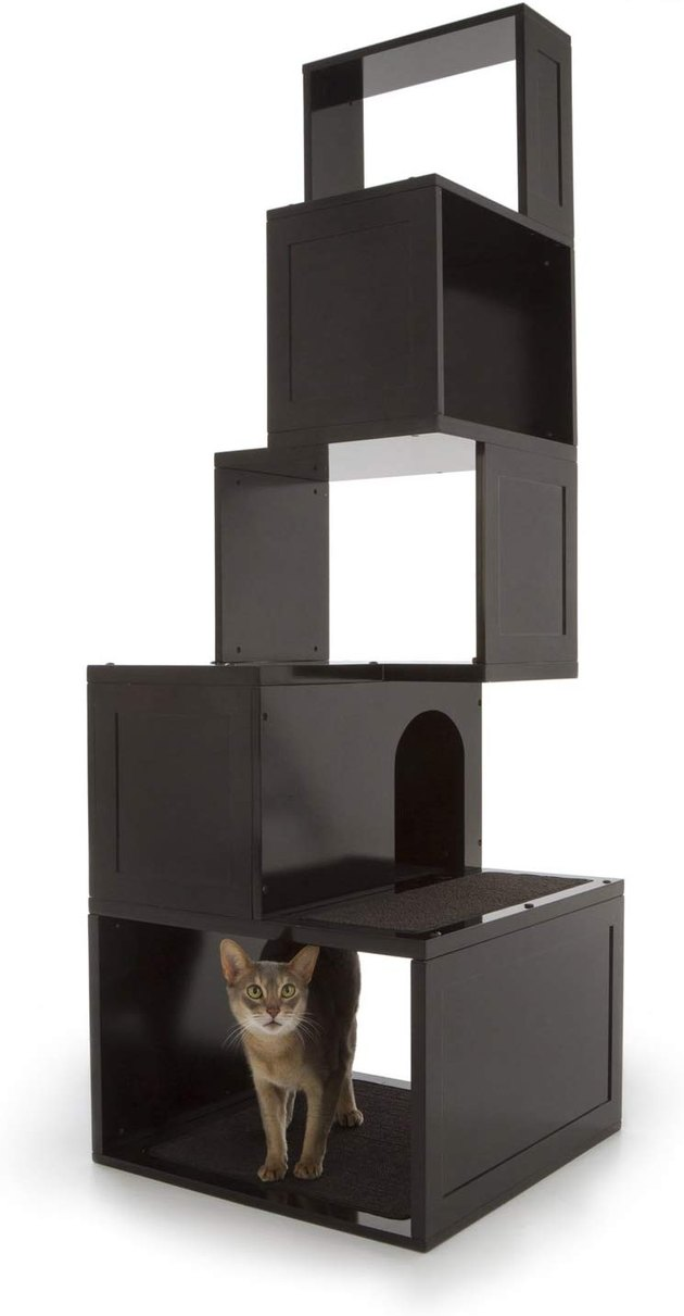 modern tiered cat tree