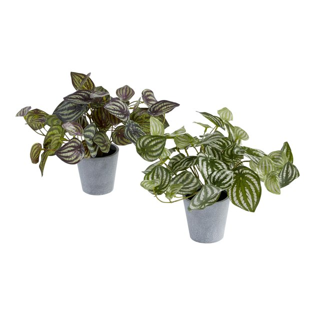 Faux Pepperomia Plant, $14.99