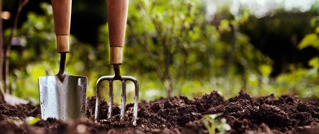 Amending soil will increase your gardening success.