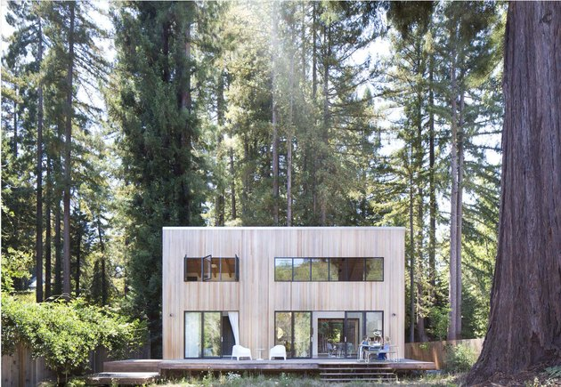Scandinavian style house with light wood amidst tall trees