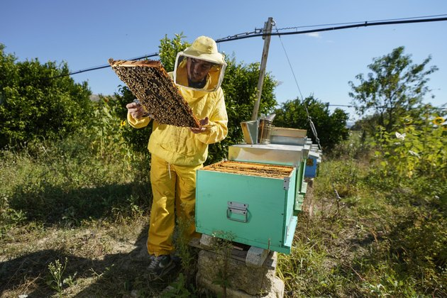beekeeper in yellow suit with beehive