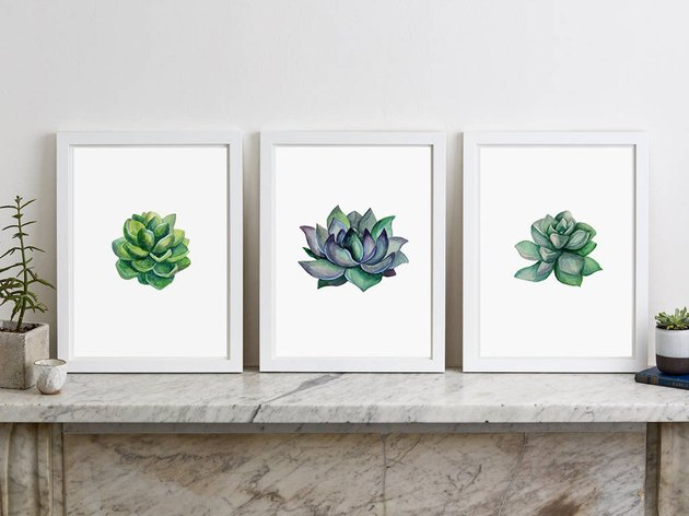 Trio of green succulent prints on white background, each print is slightly different in shape and hue