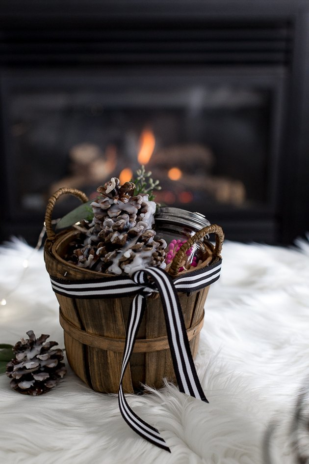 Fire starter pine cone gift