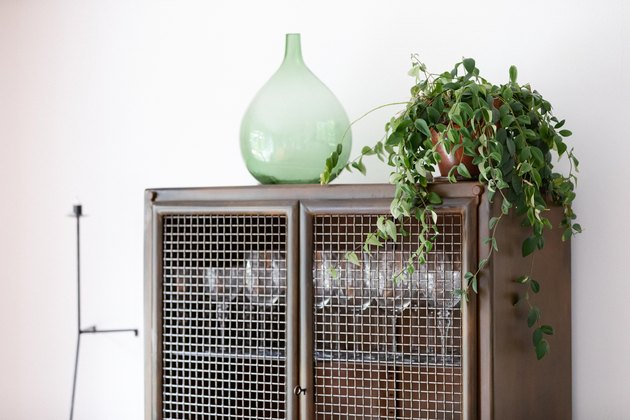 Houseplant on dining room cabinet with green glass vase