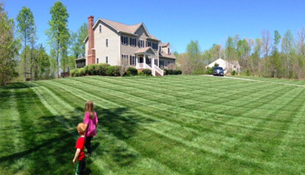 Freshly mowed lawn.