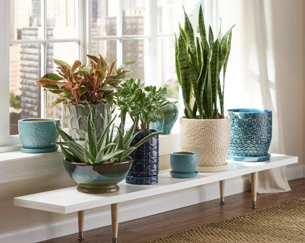 Best Planter Destinations Home Depot