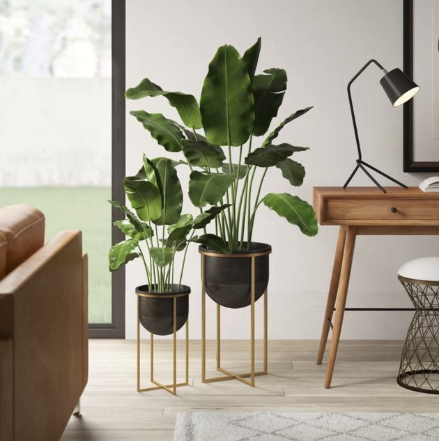 Best Planter Destinations Wayfair