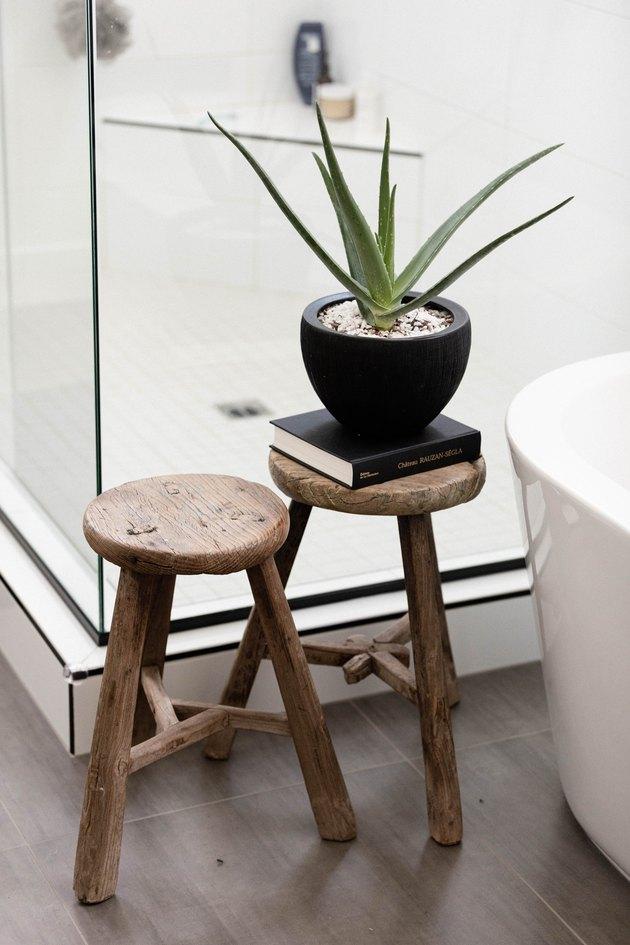 Aloe Vera plant in bathroom on wood stool