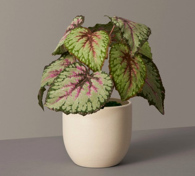 faux plant in beige planter