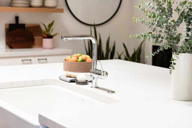 Kitchen counter, kitchen sink, plant, bowl of fruit