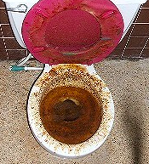 Old, stained toilet.