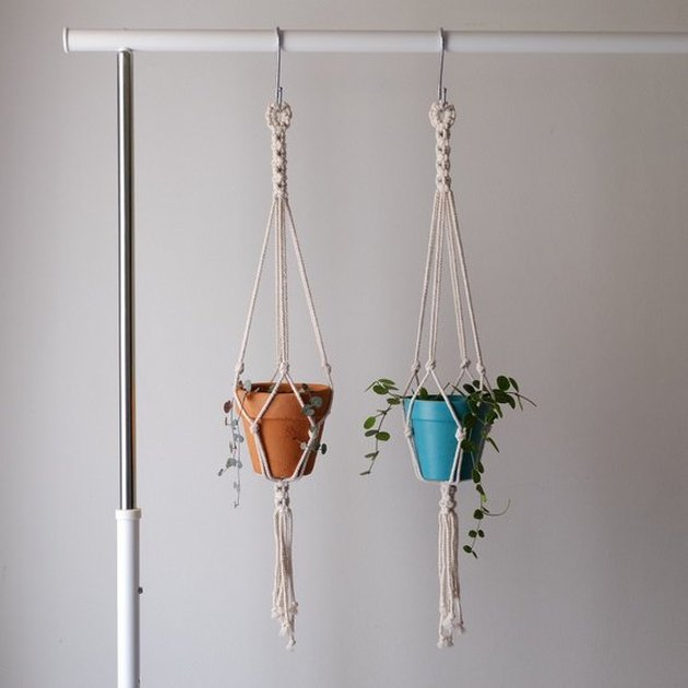 Two small macrame plant hangers holding terracotta potted plants