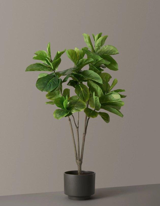 faux plant in black planter