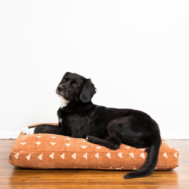Backup Design Mudcloth Dog Bed