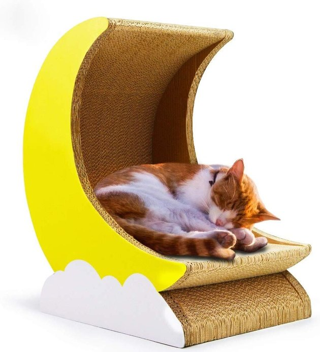 cat inside moon shaped scratcher