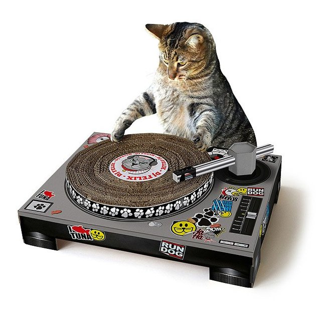 cat in front of scratching pad shaped like a DJ turntable