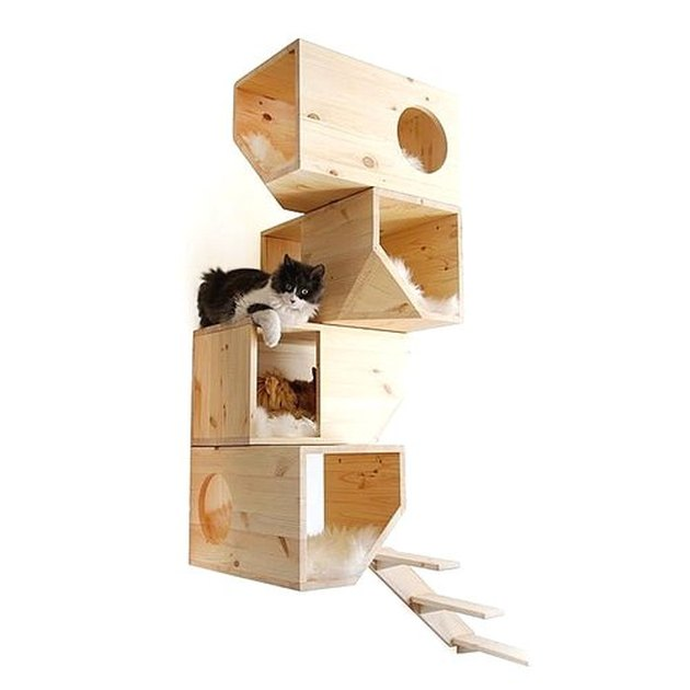 cat tree with black and white cat