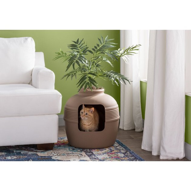 litter box with planter