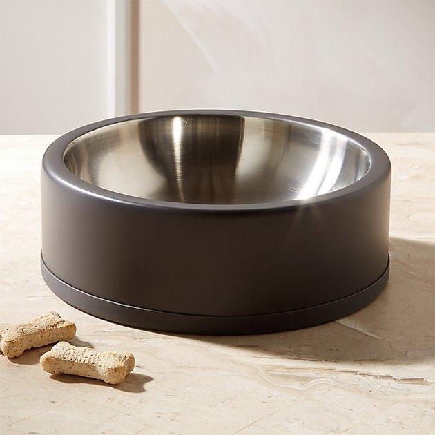 black dog bowl