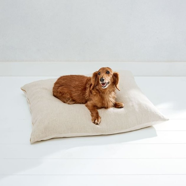 dog sitting on linen dog bed