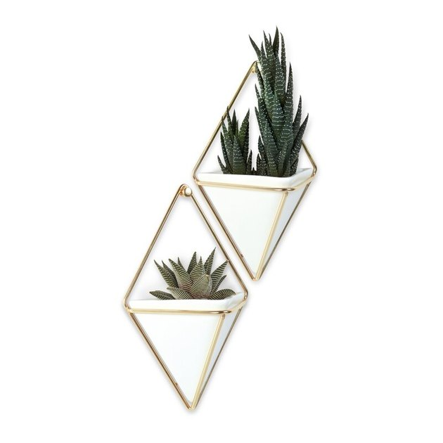 white and gold wall planters