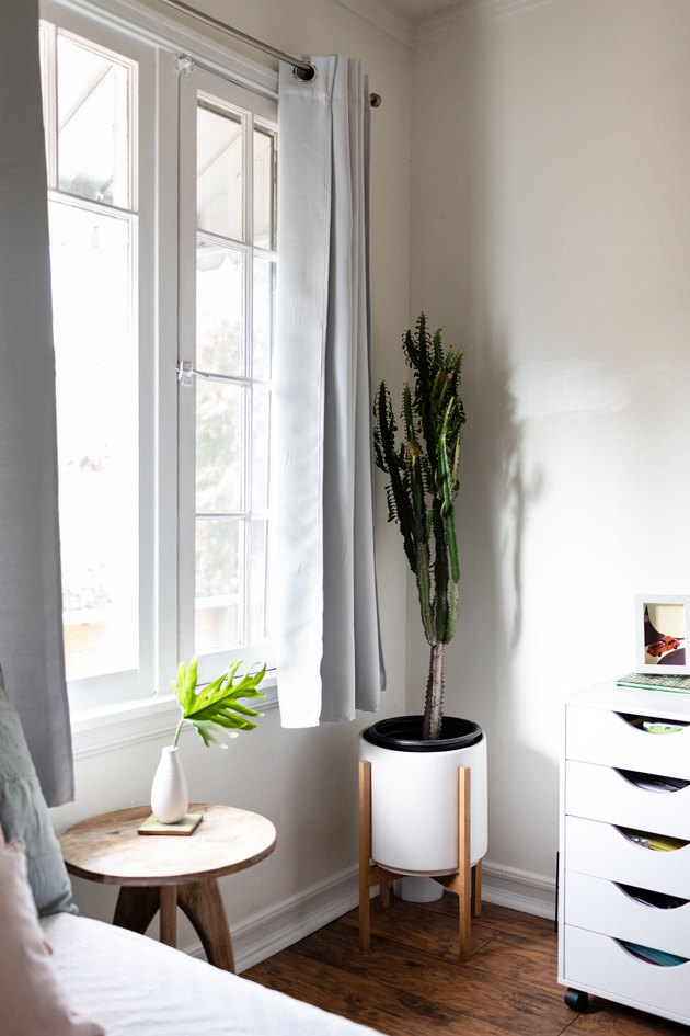 corner of room with two plants and open window