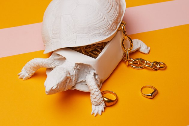 Reality Box Turtle Box