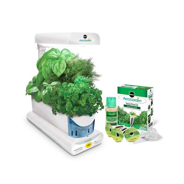 aerogarden sprout herb seed pod kit