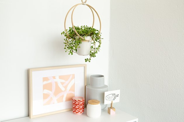 Hanging planter out of embroidery hoops.