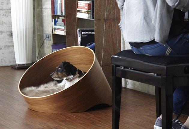 walnut wood dog bed