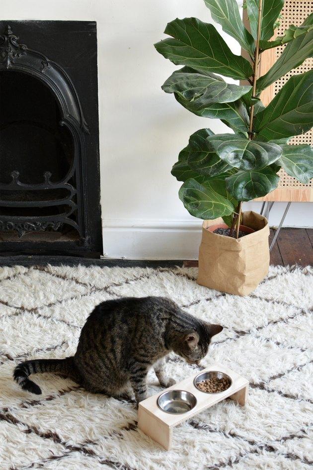 DIY Modern Cat Feeding Station
