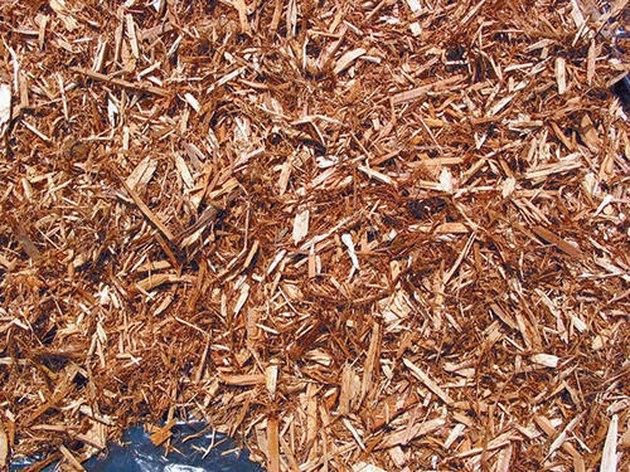 Cedar mulch.