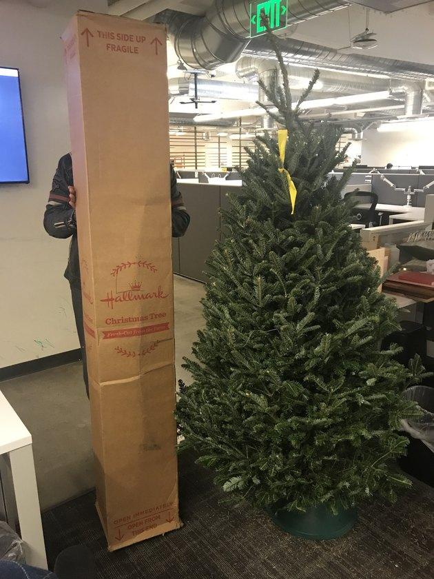 amazon christmas tree box