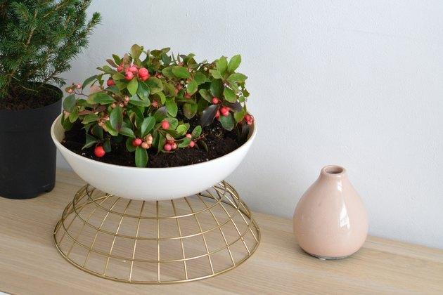 Design a planter using the Rundlig serving bowl and the Utvandig bowl.