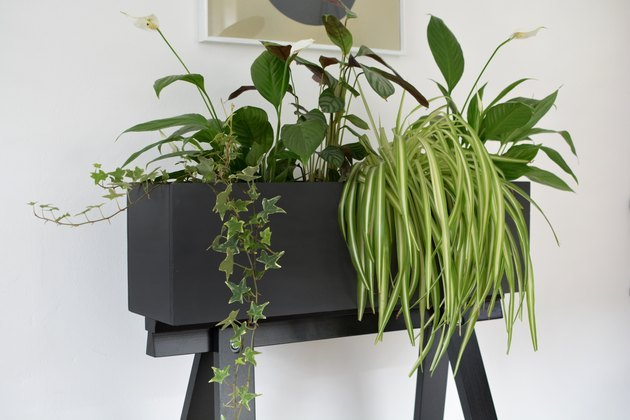 Black planter box with plants.
