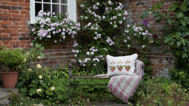 bench in garden nook