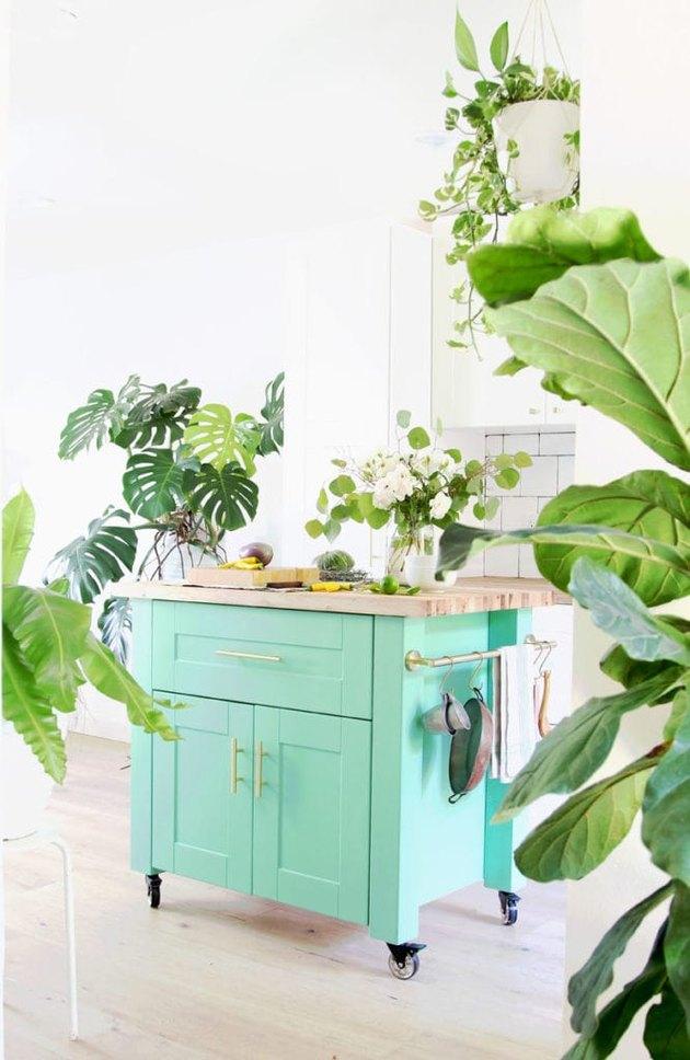 Painted turquoise IKEA kitchen island with houseplants