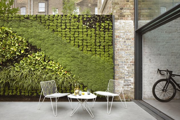 living green wall on a terrace in London