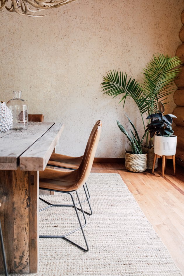 natural decor in dining room with plants in a corner