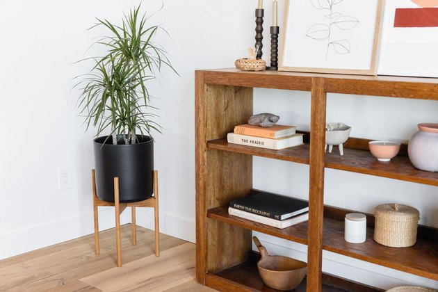 Modern planter with plant next to bookshelf