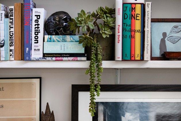 bookshelf with plant