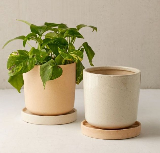 where to shop for indoor planters