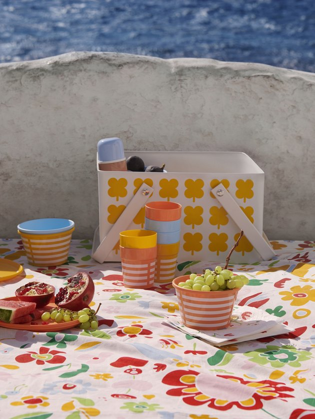 colorful picnic supplies