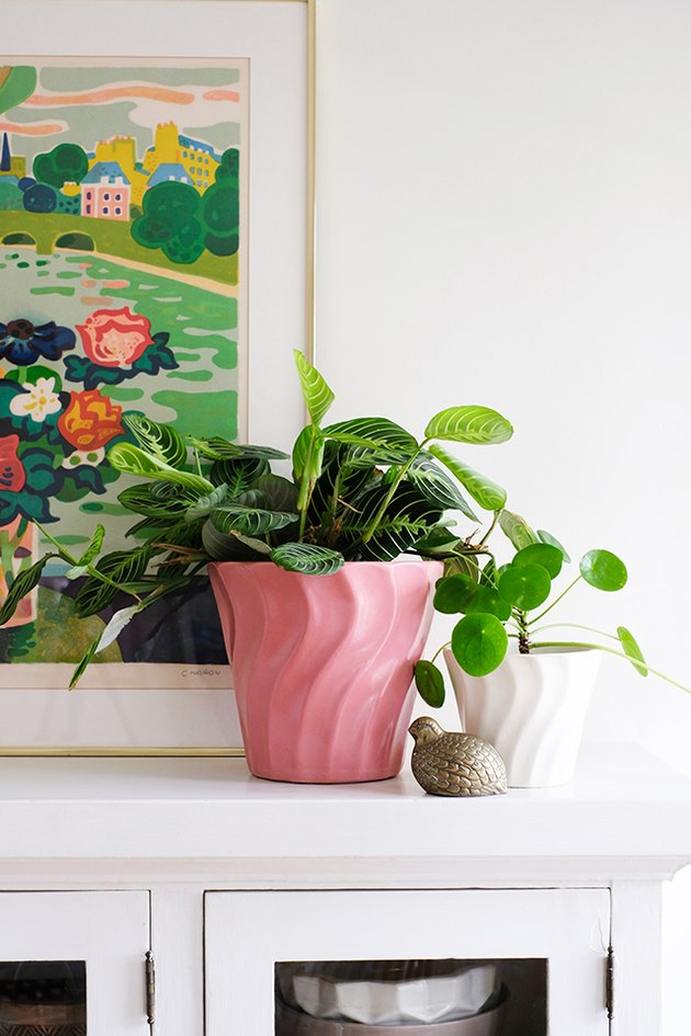 Pink Potted Plant for an easy Pop of Pink