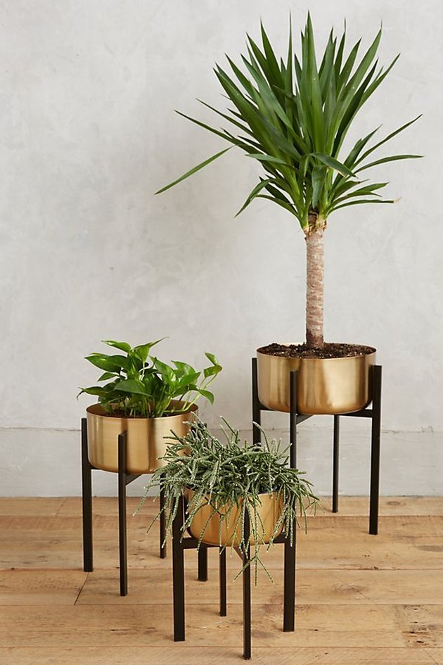 anthropologie metallic plant stand