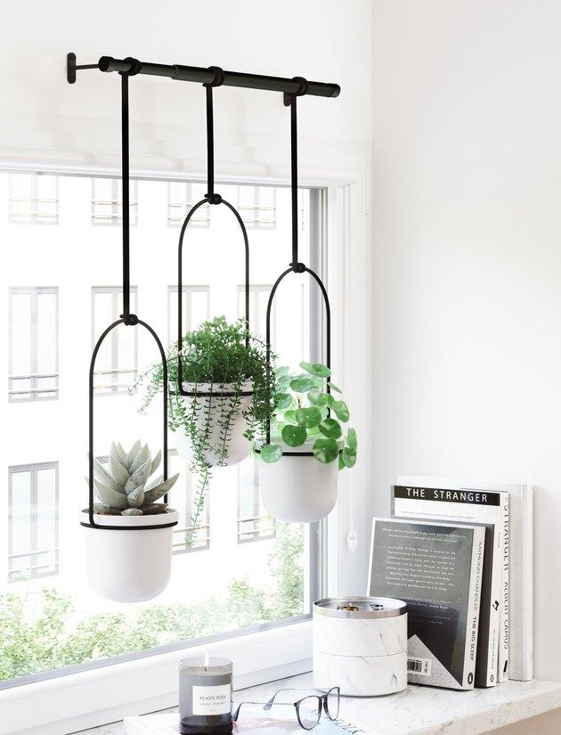 triflora hanging planter white